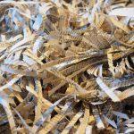 Best Method of Waste Disposal